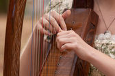 A young woman playing a harp. — Stock Photo