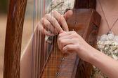 Harpist — Stock Photo