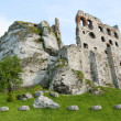 Medieval castle in Ogrodzieniec, Poland — Stock Photo