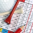 Scorecard with birdie — Stock Photo #11055807