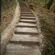 Wooden steps - Stockfoto