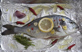 Gilt-head sea bream — Stock Photo