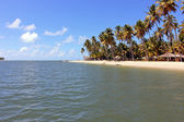 Porto de Galinhas Beach - BRAZIL — Stock Photo