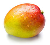 Apple mango — Stock Photo