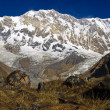 Annapurna - Stock Photo