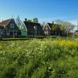 Zaanse Schans village - Stock Photo