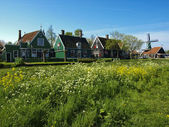 Zaanse Schans village — Stock Photo