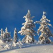 Stock Photo: Winter landscape in mountains