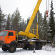 Crane working in the woods in winter — Stock Photo