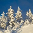 Winter landscape in mountains — Stock Photo #11150434