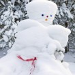 Snowman made by nature and resourceful man — Stock Photo #11150649