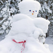 Стоковое фото: Snowmmade by nature and resourceful man