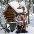 Decorative cabin in the woods. Baba Yaga fairy tale character — Stock Photo #11155128