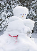Snowman made by nature and resourceful man — Stock Photo