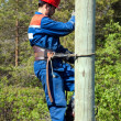 Electrician on a pole — Stock Photo