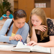 Stock Photo: Students reading a book