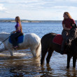 Stock Photo: Girls led horses to water