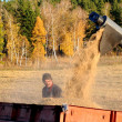 Stock Photo: Harvesting