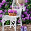 Purple sneakers in garden — Stock Photo