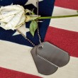 Military dog tag with rose — Stock Photo #11050977