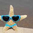 Starfish wearing bikini — Stock Photo