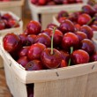 Stock Photo: Cherries in Boxes