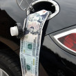 Stock Photo: Money in gas tank
