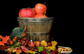 Fall Apples — Stock Photo