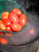 Blanching tomatoes — Stock Photo