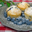 Fresh Blueberry Muffins — Stock Photo #11151740