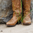 Western Style Boots — Stock Photo #11151758