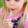 Child blowing a dandelion — Stock Photo