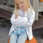Sitting pretty on a pumpkin — Stock Photo