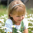 Child in wild daisies — Stock Photo