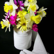 Stock Photo: Bath tissue bouquet