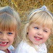 Little girls on the farm — Stock Photo #11224068