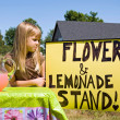 Country Lemonade Stand — Stock Photo #11224091