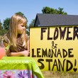 Stock Photo: Country Lemonade Stand