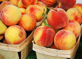 新鲜的桃子 — 图库照片