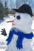 Country Snowman — Zdjęcie stockowe