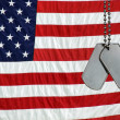 Dog tags on flag — Stock Photo