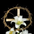 Stock Photo: Easter Lilies