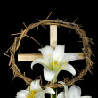 Easter Lilies - Stock Photo