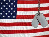 Dog tags on flag — Stock Photo
