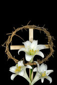 Easter Lilies — Stock Photo
