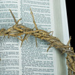 Crown of thorns on Holy Bible — Stockfoto