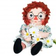 Rag doll with daisies — Stockfoto