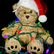 Teddy bear in tangled holiday lights - Stockfoto
