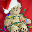 Tangle Teddy Bear — Stock Photo