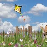 Girl flying a kite — Stock Photo